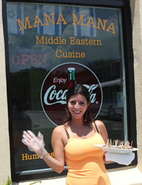 Mana Mana Middle Eastern Restaurant Clearwater